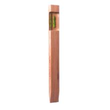1106_Asparagus